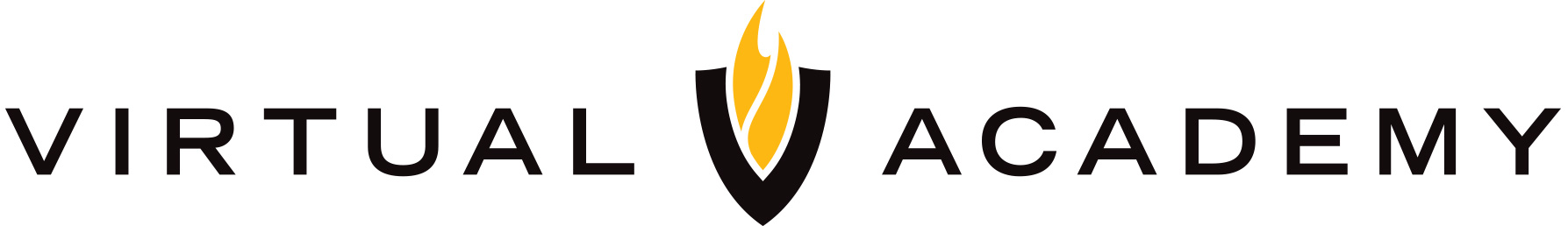 Virtual-Academy-logo_horz_BLK-GOLD-on-white