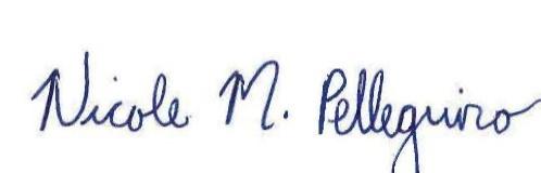 N pellegrino Signature