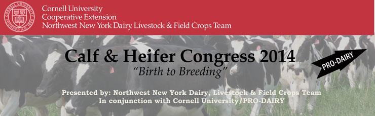 Calf--&-Heifer-Congress-Hea