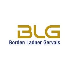 BLG CV