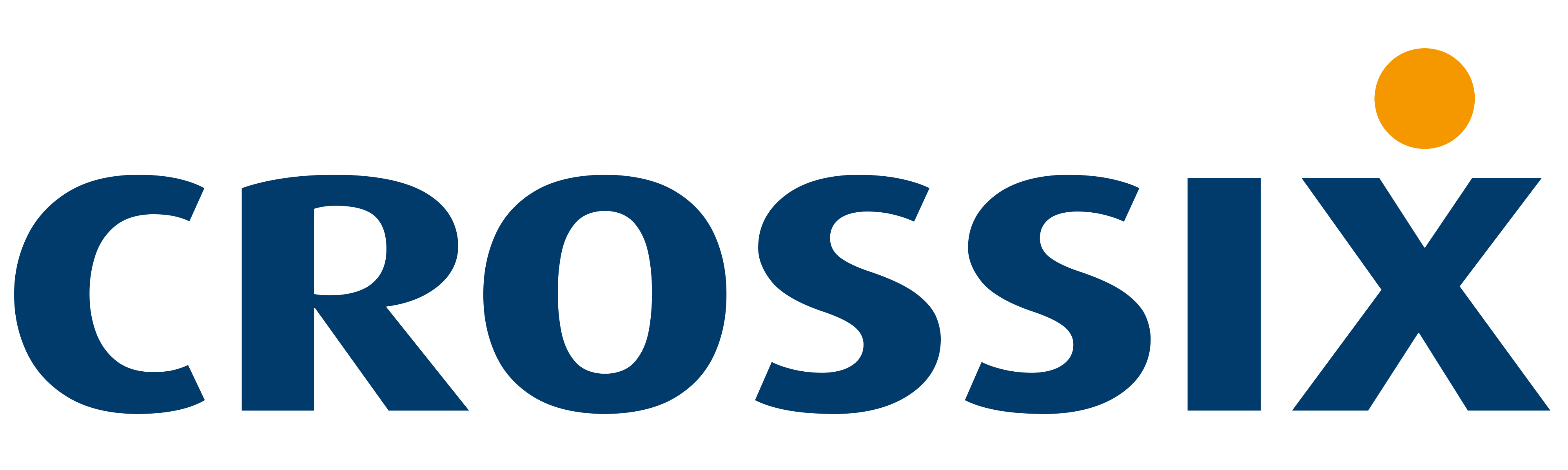 Crossix_Logo_Large_No_White_Background