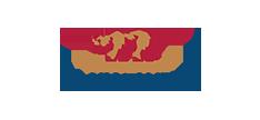 BrightBytes logo1