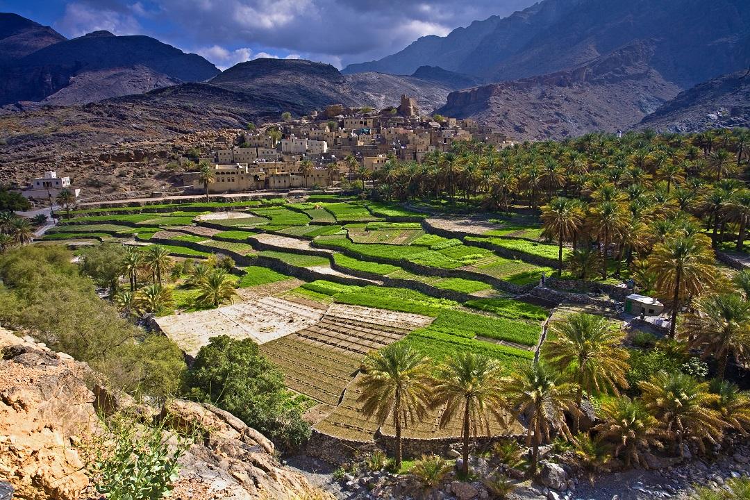 Oman_blad seat