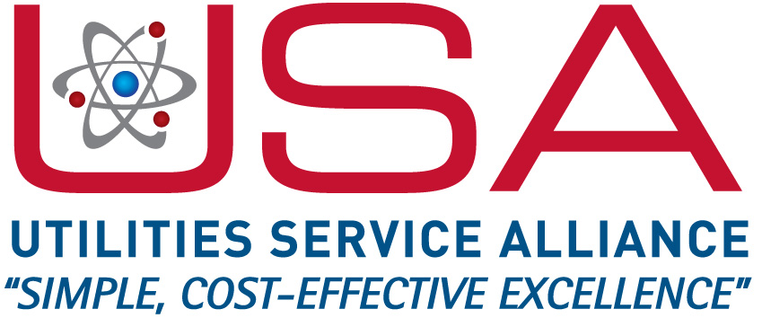 USA 2015 Logo_LRG