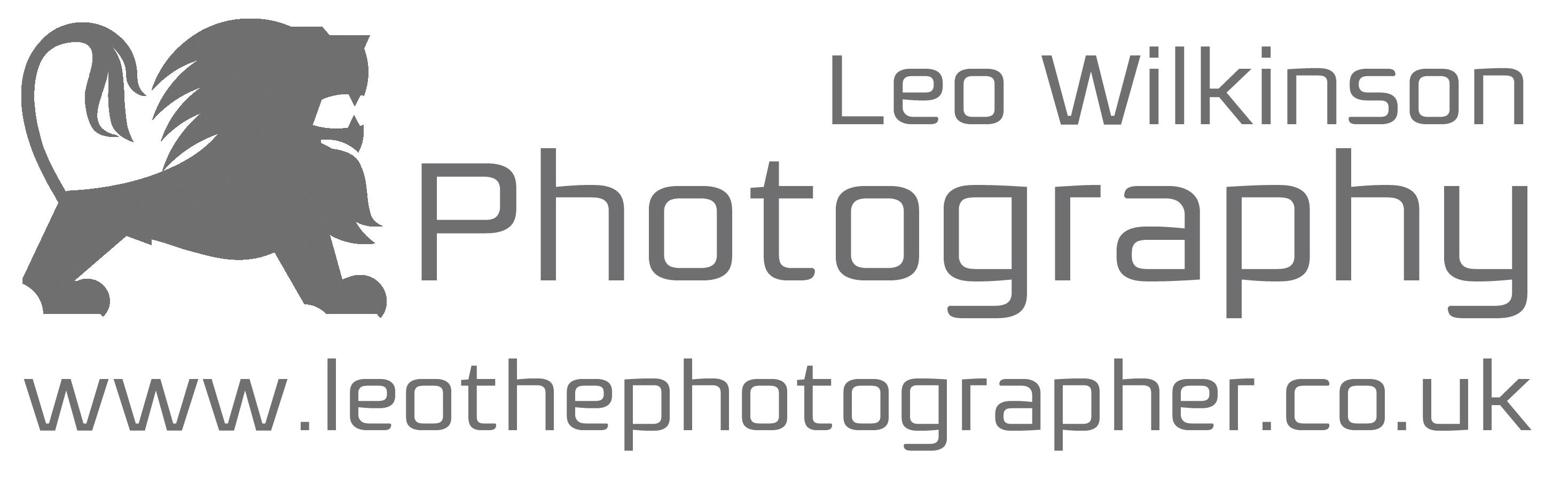 Leo_W LogowithURL(1)