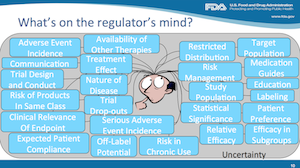 What's on the regulator's mind?