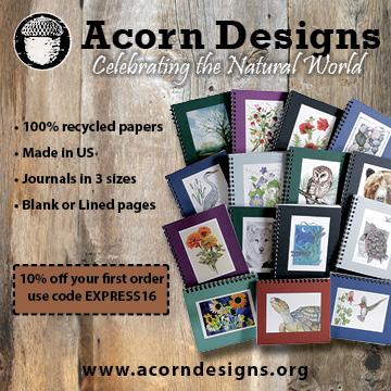 Acorn Designs Web Ad