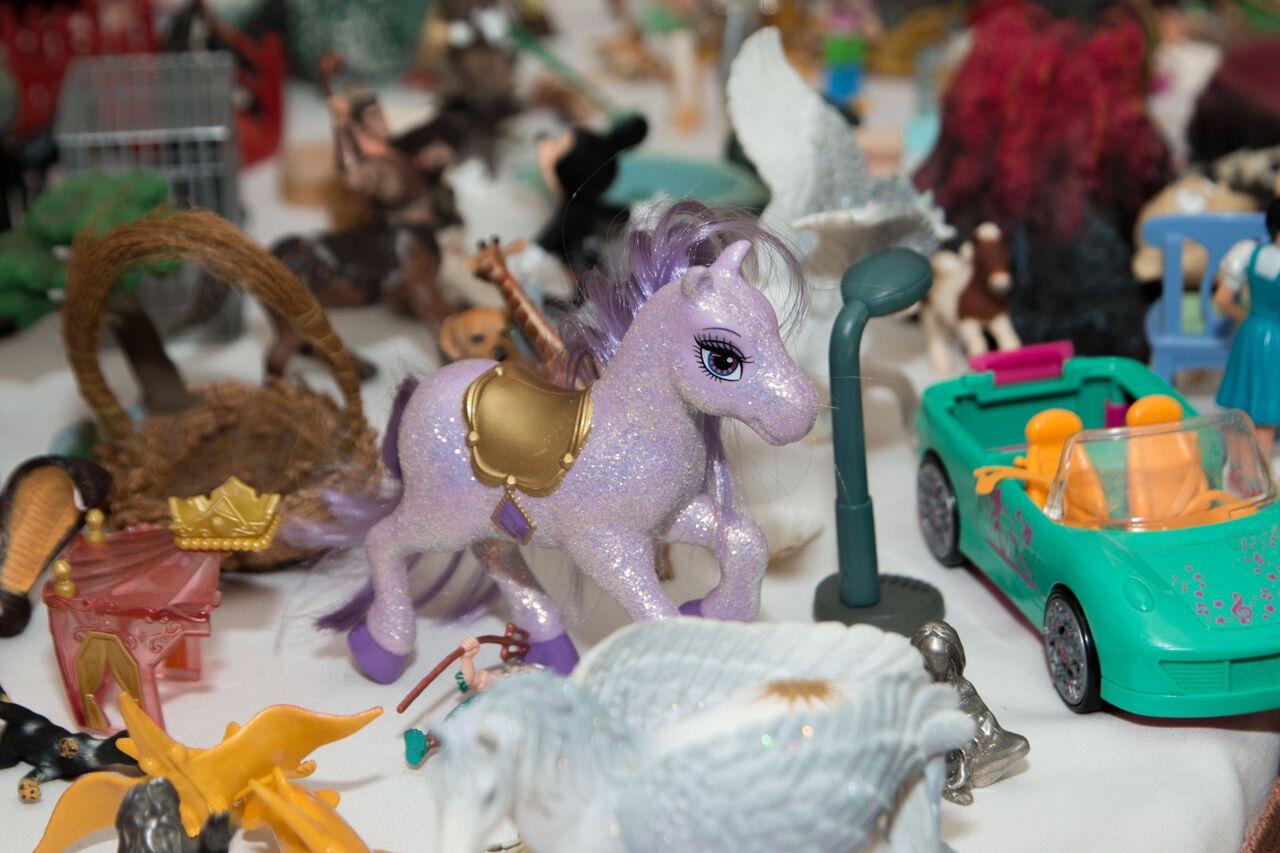miniature pony closeup