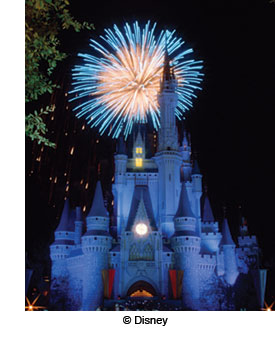 Cinderella's castle with fireworks