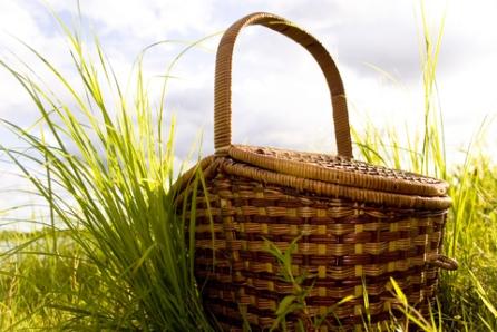 a-green-picnic