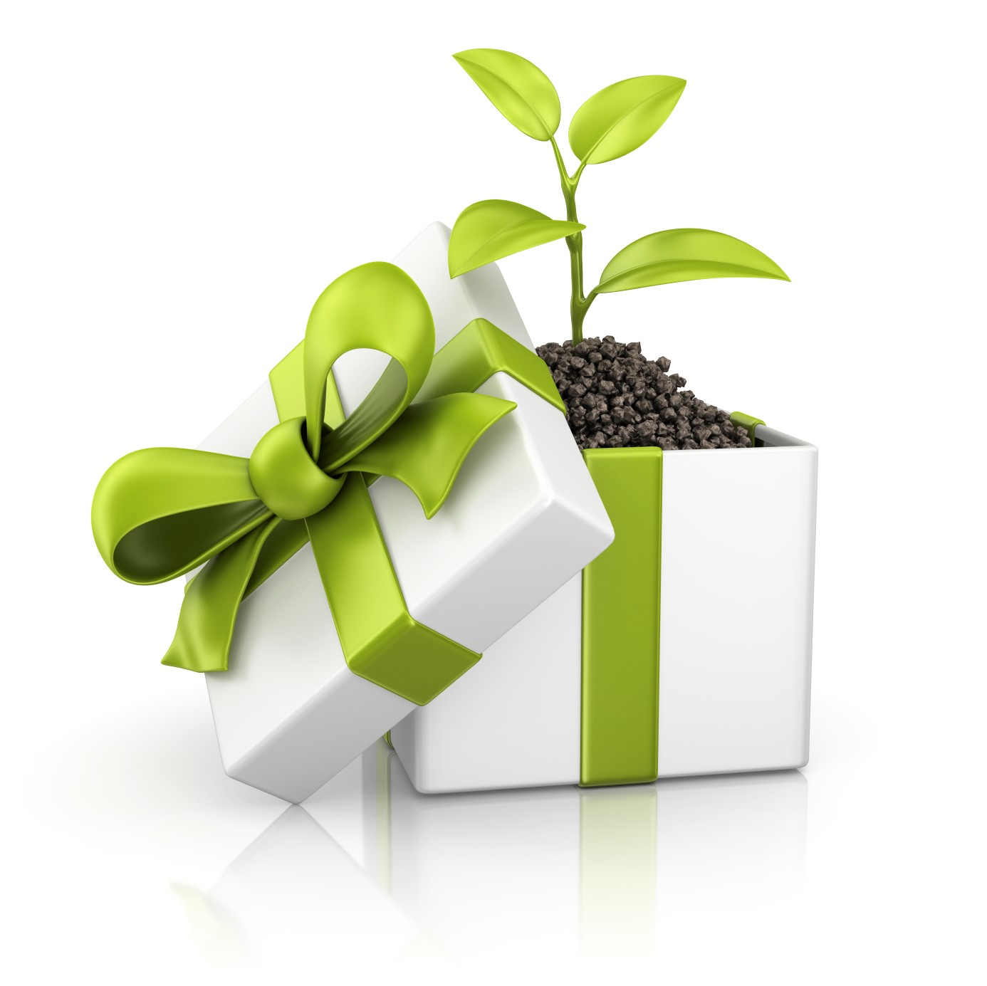 eco-friendly-gift-1386x1385