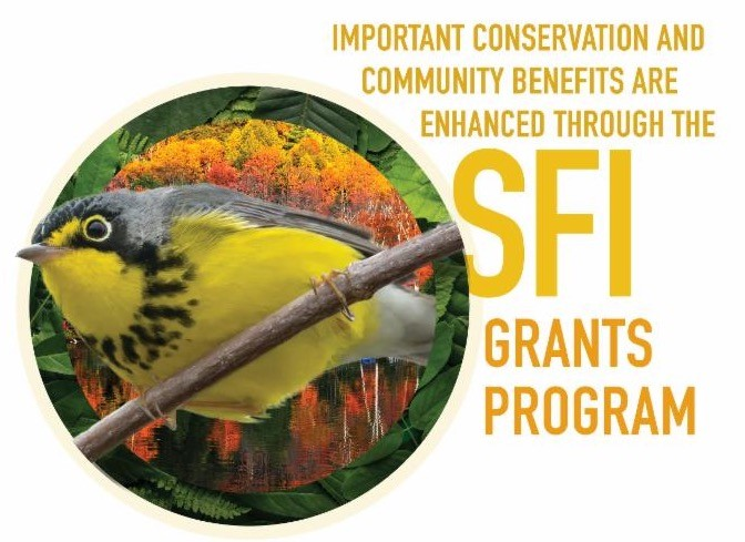 SFI grant 2018
