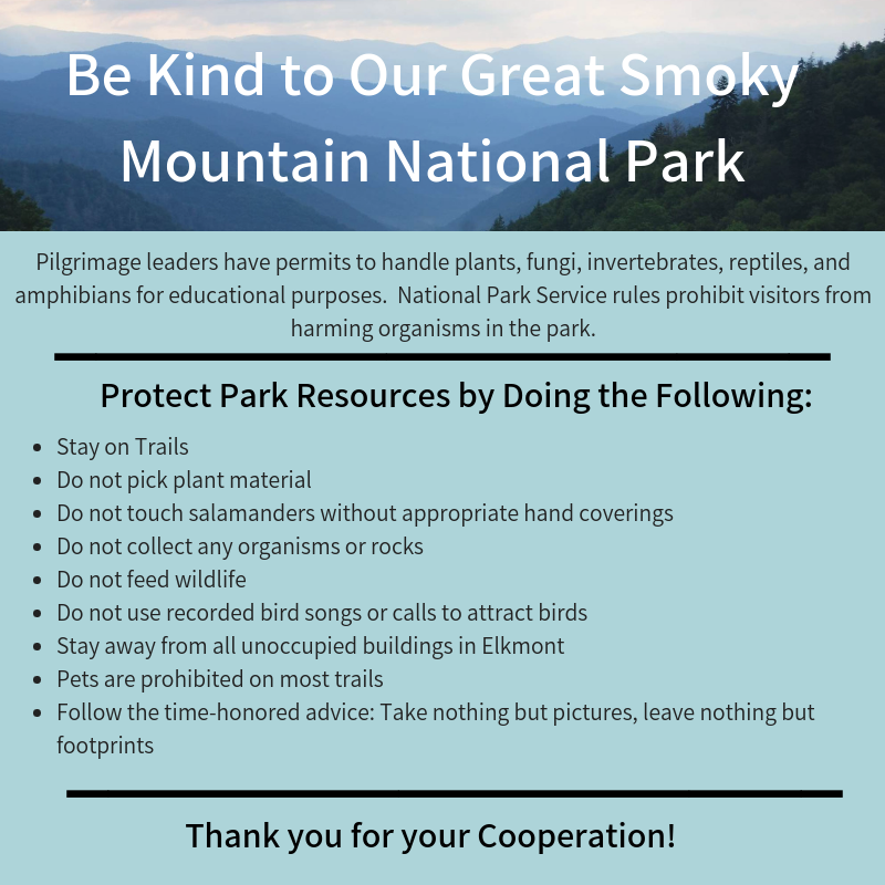 Protect the Mt.