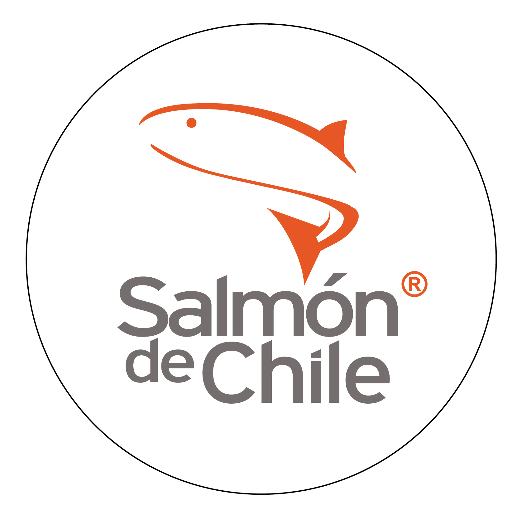 Salmon de Chile Logo Hi Res
