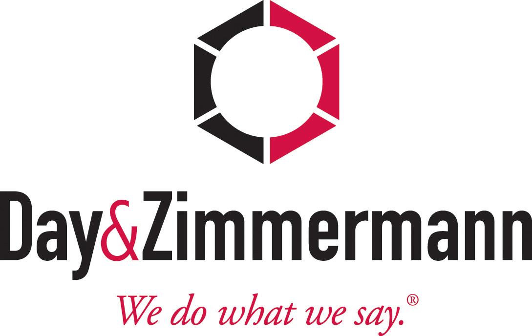 DZ Logo Color