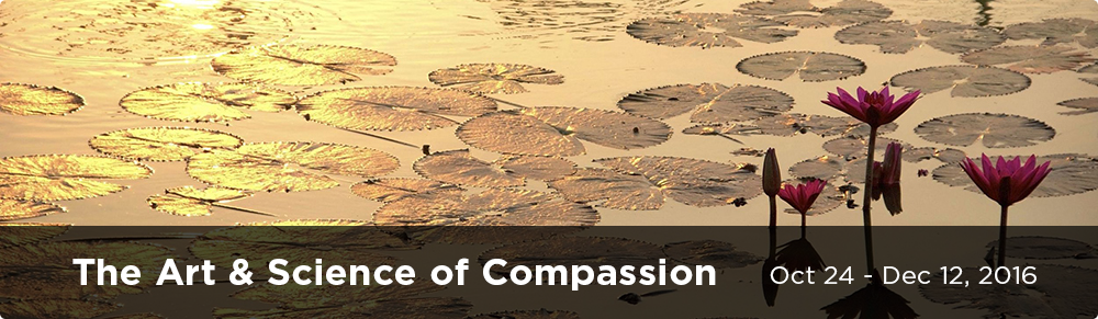 Art and Science of Compassion Online course