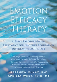 Emotion Efficacy Therapy book cover