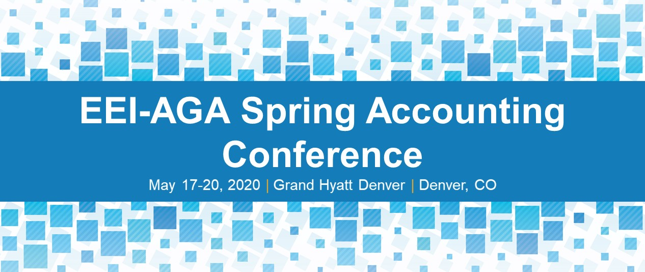 EEI-AGA Spring Accounting Conference