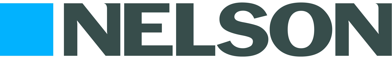 Nelson Icon_Logo_hi