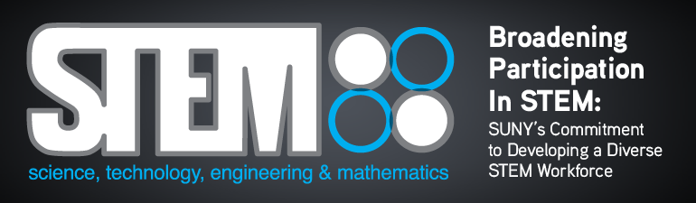 STEM2013Banner