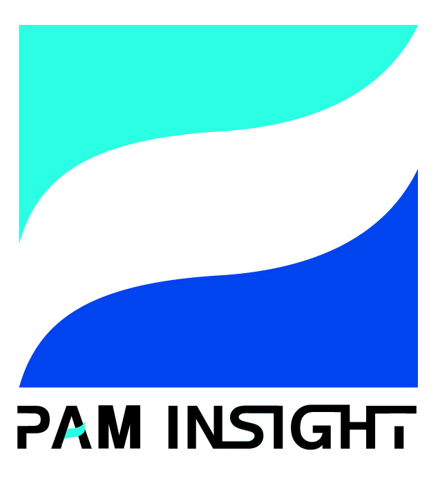 paminsight_small_colour