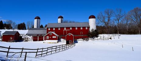 Dairy Livestock (Cattle Congress) Crops Compliance 465x200