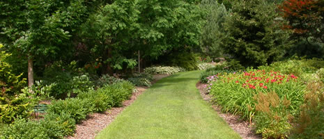 Turf & Ornamentals in a Managed Landscape