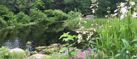 Pond Management (PSU K Salisbury)
