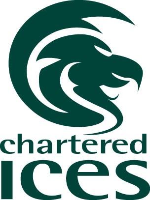 Logo CICES