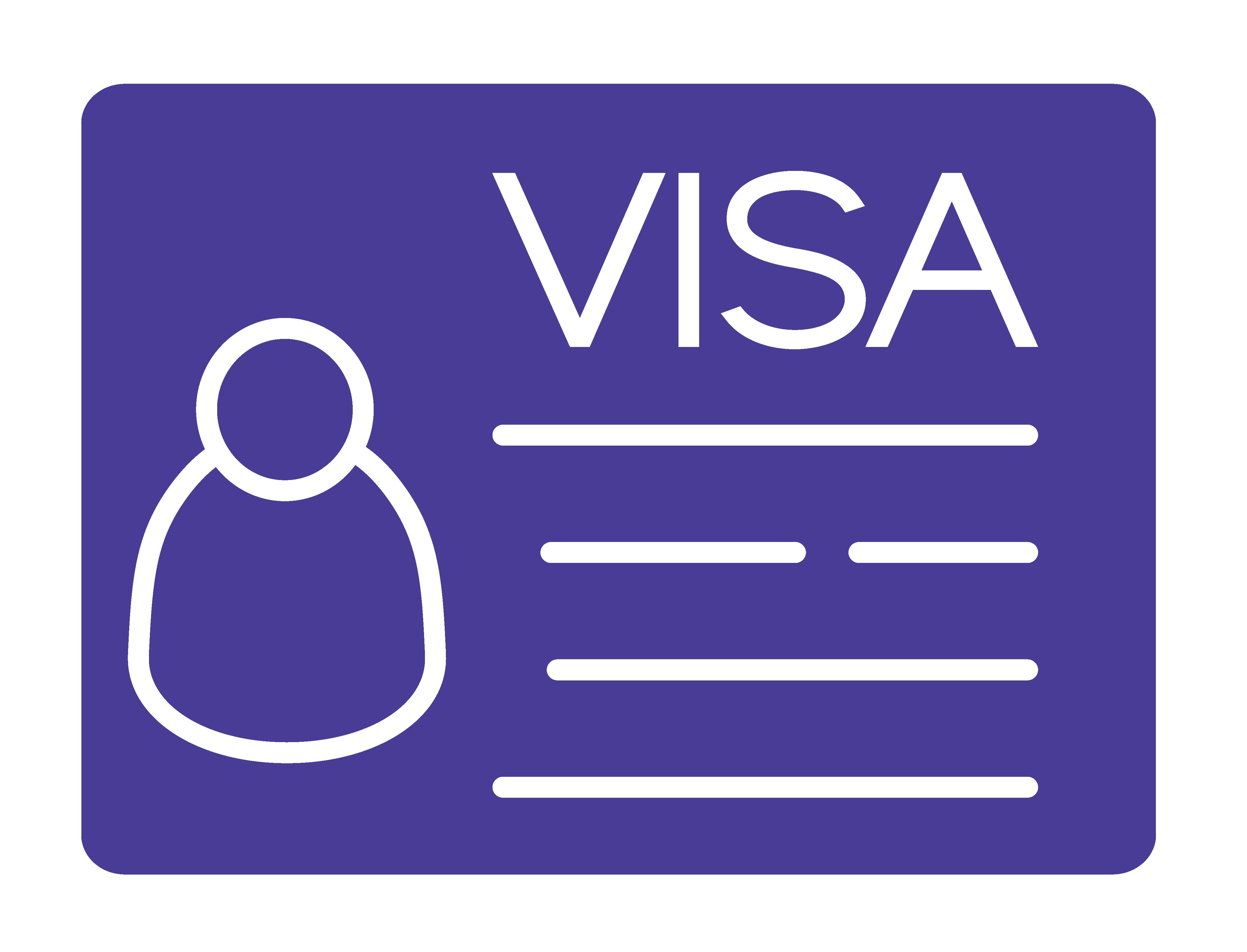 Visa icon-01