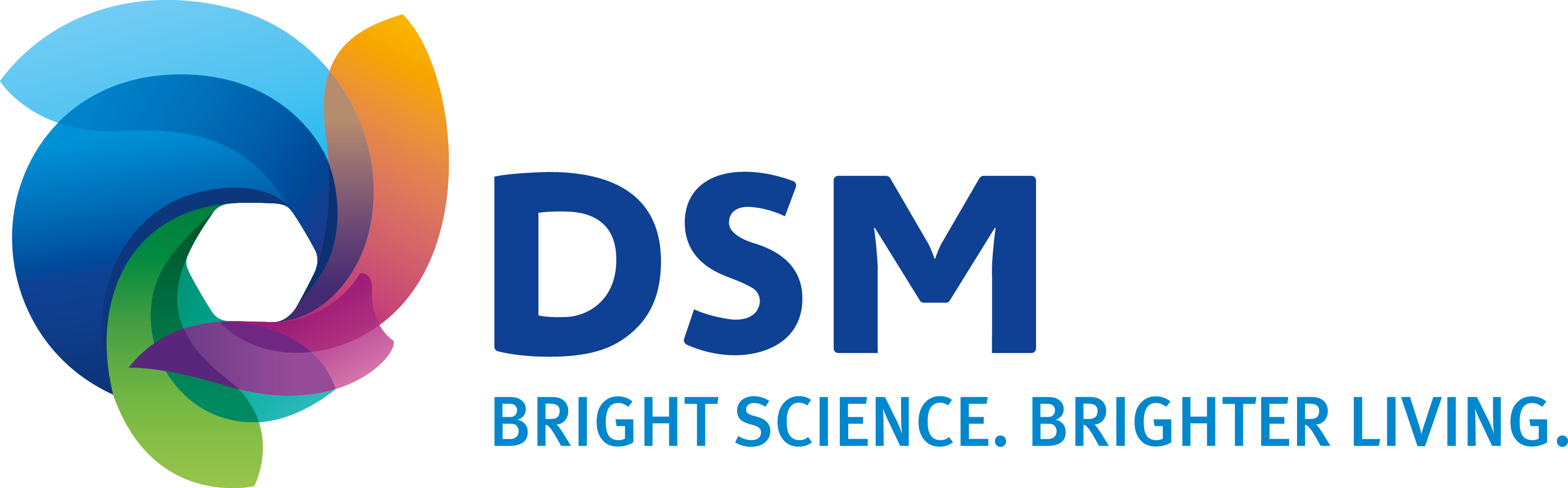 DSM_MasterLogo_FullColor (from online)
