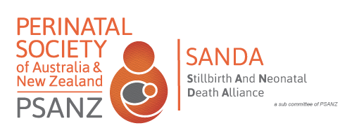 Stillbirth-and-Neonatal-Death-Alliance-2