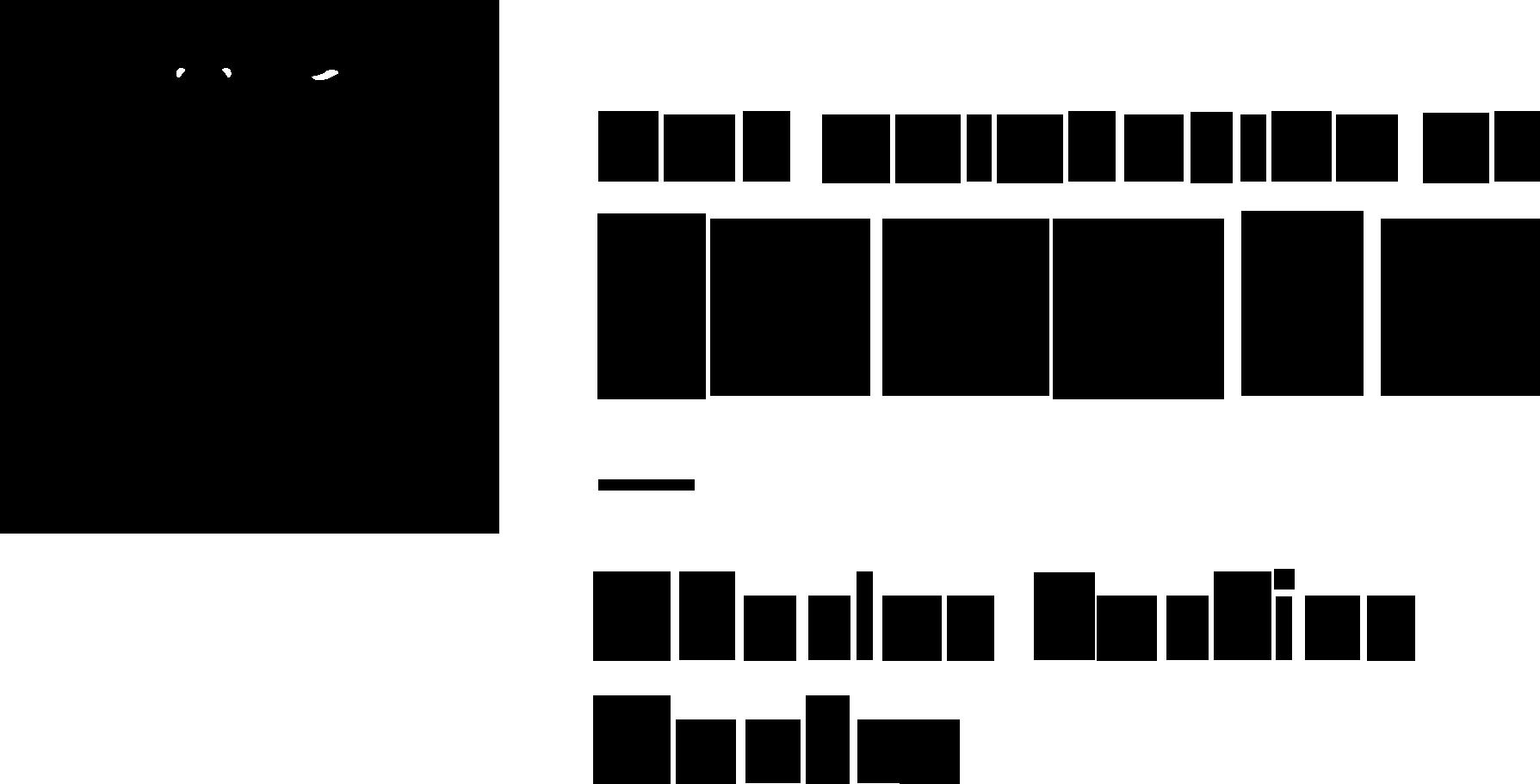 Sydney Uni logo (black)