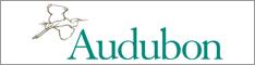 Audubon_234_border